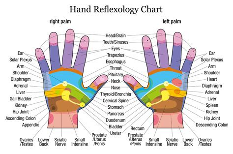 reflexology diagram free reflexology charts points for specific ailments