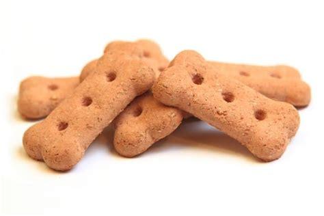 biscotti fatti in casa ricetta ricetta biscotti per cani non sprecare