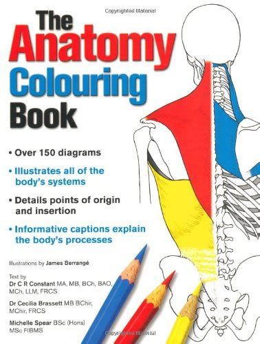 anatomy colouring book australia anatomy colouring book constant c r 1847738699