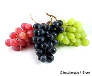 imagenes de uvas en globos beneficios de la uvas mercola com