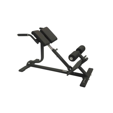 back extension on bench back extension bench torque fitness exercise stations