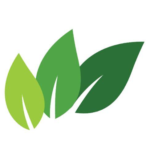 Green Leaf Renzo Basket 383 ellorganics shop be be organic be better