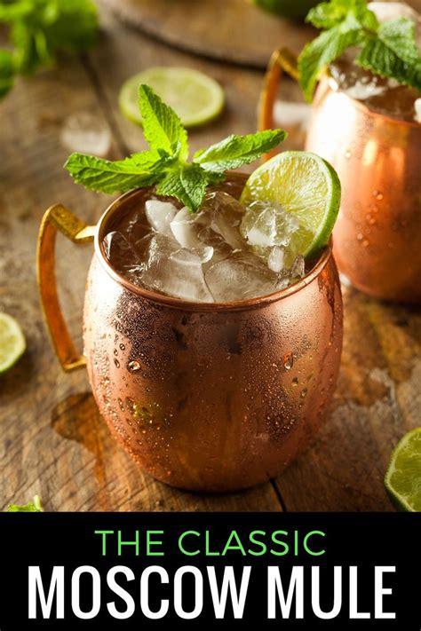 best moscow mule best 25 moscow mule recipe ideas on mule