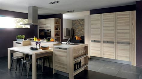 Holiday Kitchen Cabinets Reviews Kitchen Cabinet Design Warm Kitchen Colors With Oak