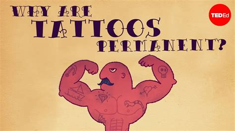 why are tattoos permanent what makes tattoos permanent aguirre