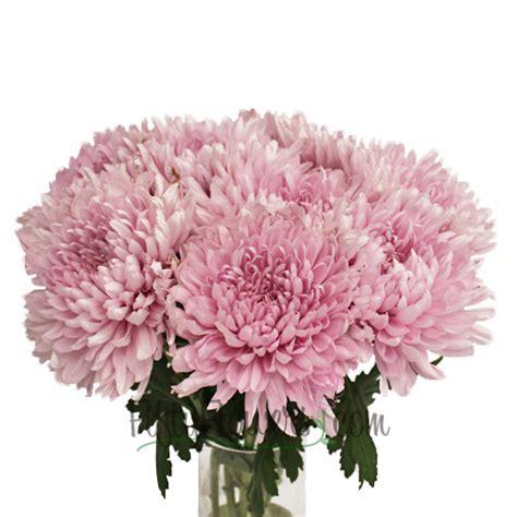 mum flower arrangement pink jpeg football mums