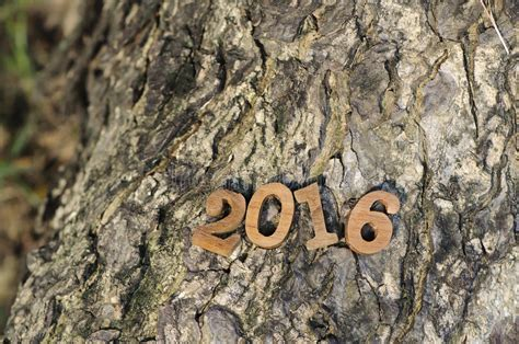 new year 2016 wood happy new year 2016 nature concept and wood number idea