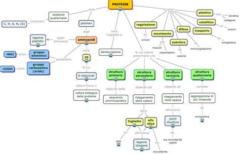 alimenti contenenti aminoacidi proteine mappa concettuale