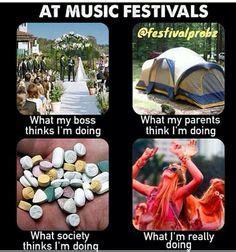 Festival Girl Meme - 1000 ideas about rave meme on pinterest edm girls rave