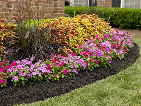 best mulch for flower beds benefits of using mulch vining stone