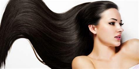 Sho Untuk Rambut Berminyak Ketombe Dan Rontok manfaat lidah buaya untuk rambut rontok kering kusam dan