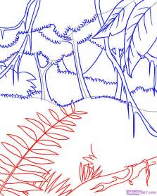 Large Foliage Plants - how to draw a rainforest step by step landscapes landmarks amp places free online drawing