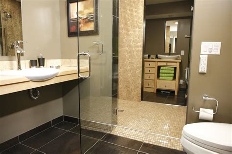 handicap mirrors for bathrooms home design ideas beautiful handicap grab rails for