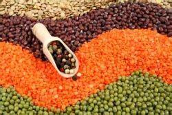 alimenti riducono il colesterolo i legumi riducono il colesterolo