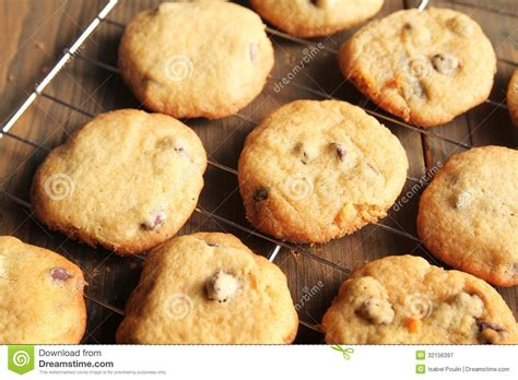 fresh cookies fresh cookies royalty free stock photography image 32156397
