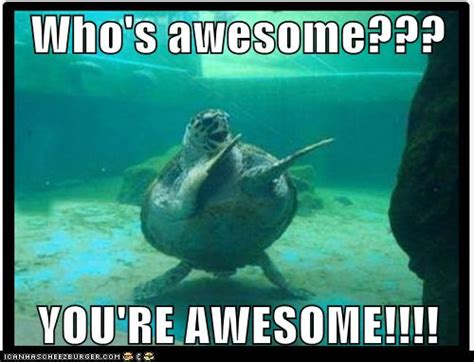whose awesome you re awesome who s awesome you re awesome motivation