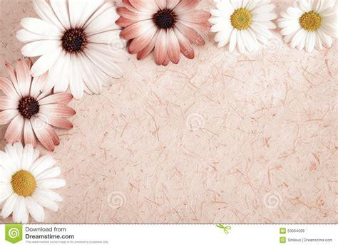 imagine fiori fondo della pergamena incorniciato con i fiori fotografia
