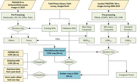 workflow map the workflow of mapping tropical forest and deciduous