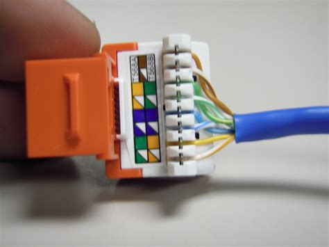 cat 6 wiring diagram for wall plates legrand 44 wiring