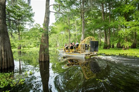 airboat louisiana must experience louisiana sw tours louisiana travel