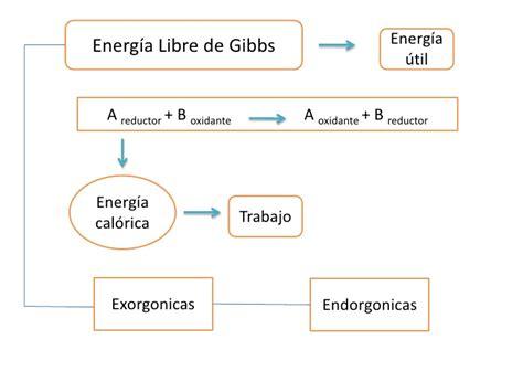 hermosas reacciones qu 237 micas capturadas en video quimica energia libre de gibbs bachillerato entropia