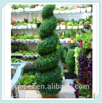 outdoor spiral trees outdoor potted spiral tree buy spiral