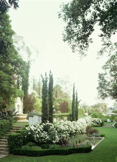 italian cypress for our second dream home pinterest