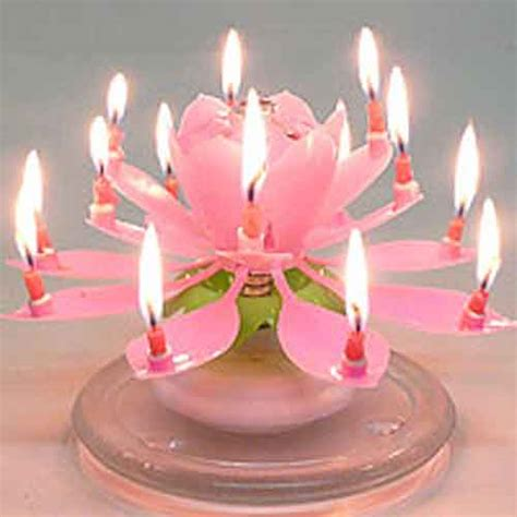 lotus flower birthday candle amazing musical flower birthday candle 5 95 lotus