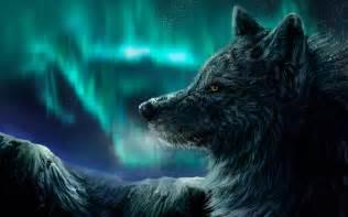 pics photos white fantasy wolf hd ipad wallpaper 56659