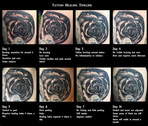 tattoo healing process 17 healing stages s healing process