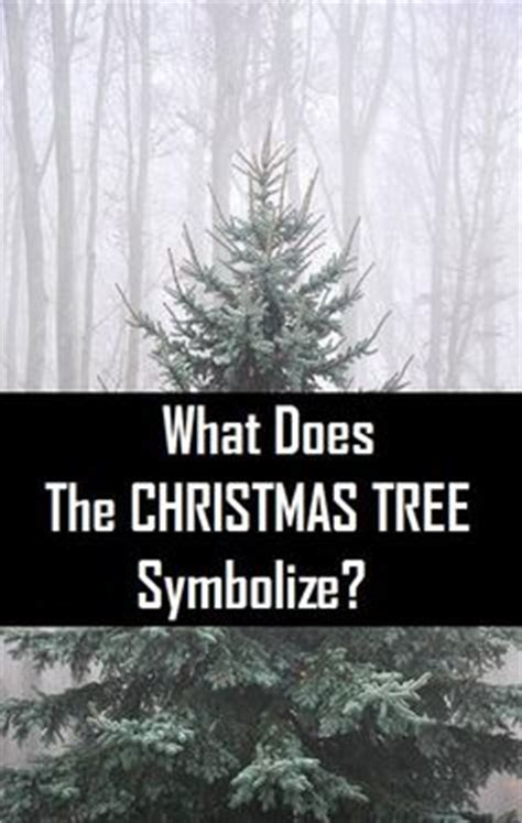 what does a tree represent 1000 images about good to know on pinterest