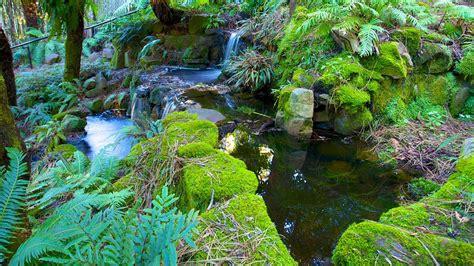 Botanic Gardens Hobart Royal Tasmanian Botanical Gardens In Hobart Tasmania Expedia