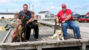 dogs saving lives pet connection service dogs saving lives the chronicle herald
