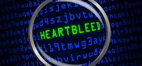 heartbleed tutorial hack hack like a pro how to scan the internet for heartbleed