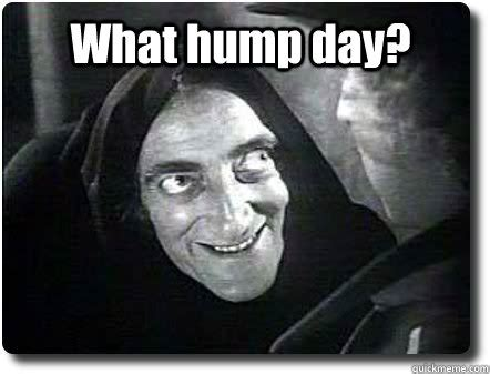 Sexy Hump Day Memes - what hump day memes quickmeme