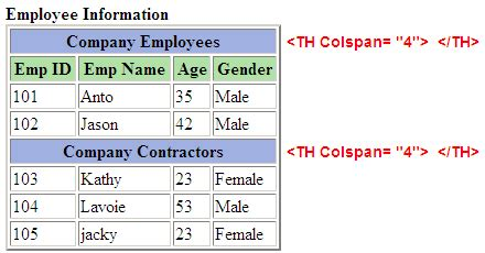 table layout html exles html table colspan and rowspan javachain com