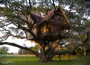 Houses For Rent 1 Bedroom Victorian Style Tree House Netdog 06