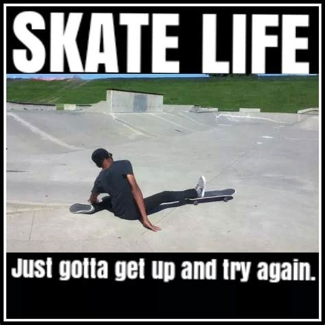 my favorite skateboard memes http www actionsportsdesk