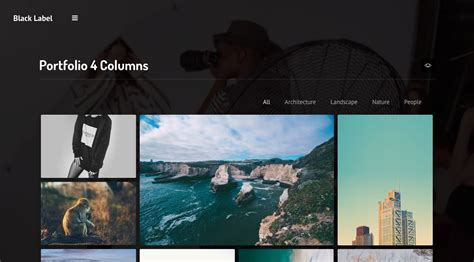 themeforest video background black label fullscreen video image background by