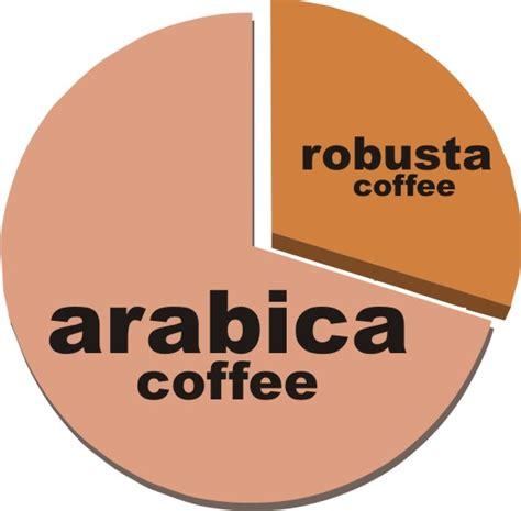 Coffee Robusta robusta coffee