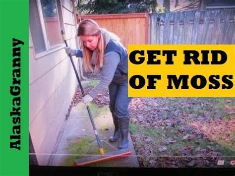 how to get rid of moss on patio stones removing moss with soda crystals doovi