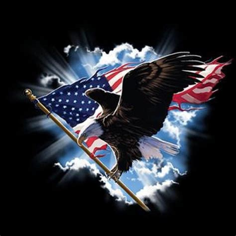 Does Walmart Sell American Eagle Gift Cards - soaring bald eagle holding american flag t shirt all sizes colors 166 ebay