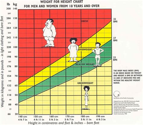 Bmi for adults what is bmi mike buss