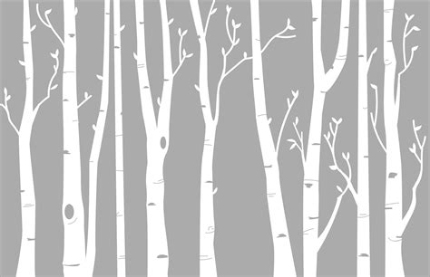 Wall Transfer Stickers birch tree wall decal