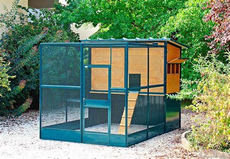 allevare animali da cortile pollaio bartok 1 di terenziani