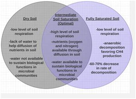 global warming venn diagram the effects of global climate change on soil respiration