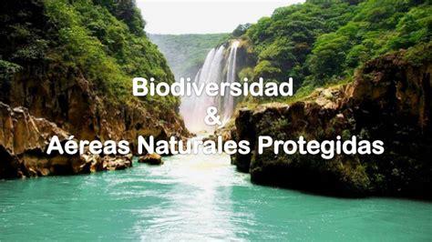 imagenes de areas naturales biodiversidad y areas naturales protegidas