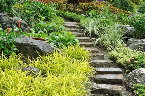 jardines casas de co escaleras exteriores dise 241 os ideales para patios y