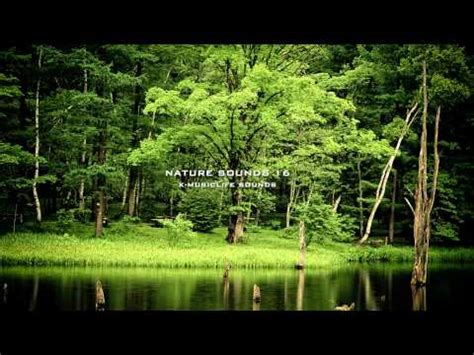enature youth vk com enature videolike