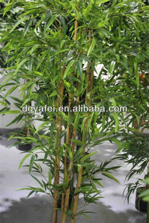 best quality trees best quality house plant bamboo tree artificial decorative